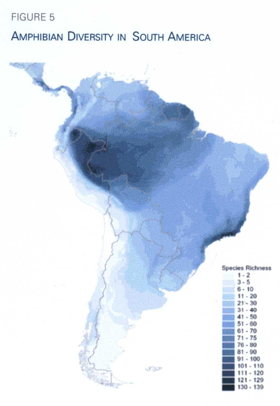 Yasuni Rainforest CampaignDiversity Maps Amphibian - Amphibian loss us map