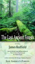 The Last Ancient Forests with James Redfield